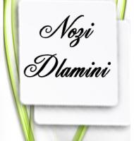 Nozi Dlamini