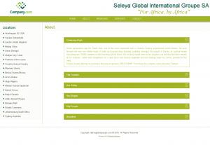 Seleya Global International Groupe SA 2