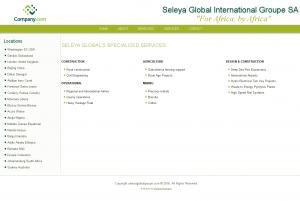 Seleya Global International Groupe SA 4